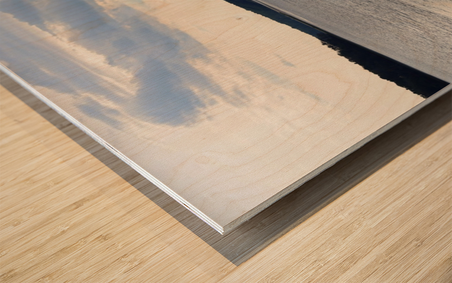 Oceans Wonder Wood print