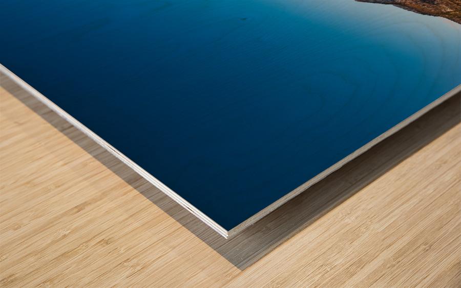 Blue freeze Wood print