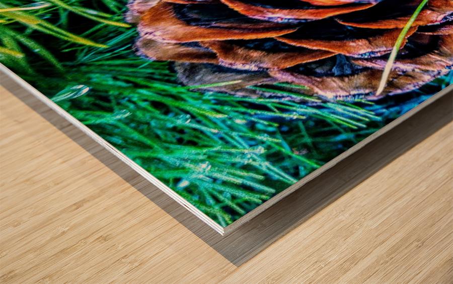 20191124_134632 Wood print