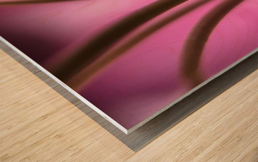 Pinky 3 Wood print