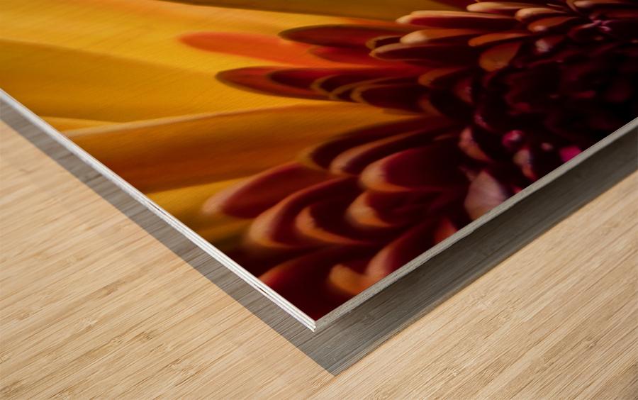 Jaune 1 Wood print