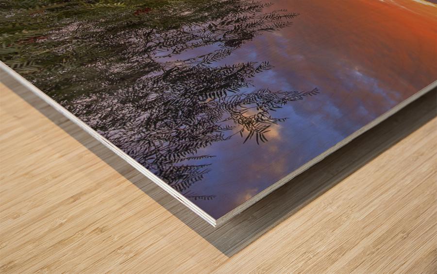 American Dream Wood print