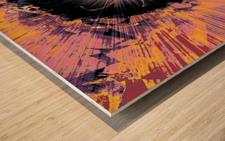 Painted Nova 1  Wood print