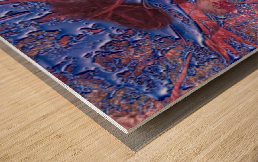 047264A6 45C1 4C43 9240 E659AD5DC9C6 Wood print