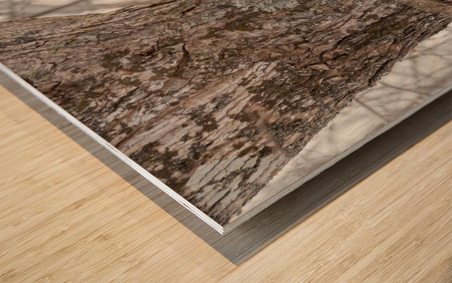Peekaboo Wood print