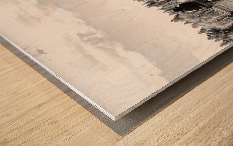 U. S. Civil War Re-enactment Wood print
