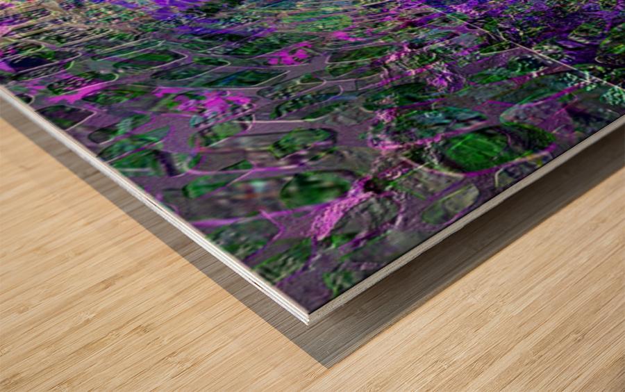 413861F3 3406 4870 B019 841561C43339 Wood print
