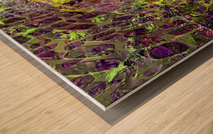 5F4780C8 AF40 414A A97A B966BFB11DF5 Wood print