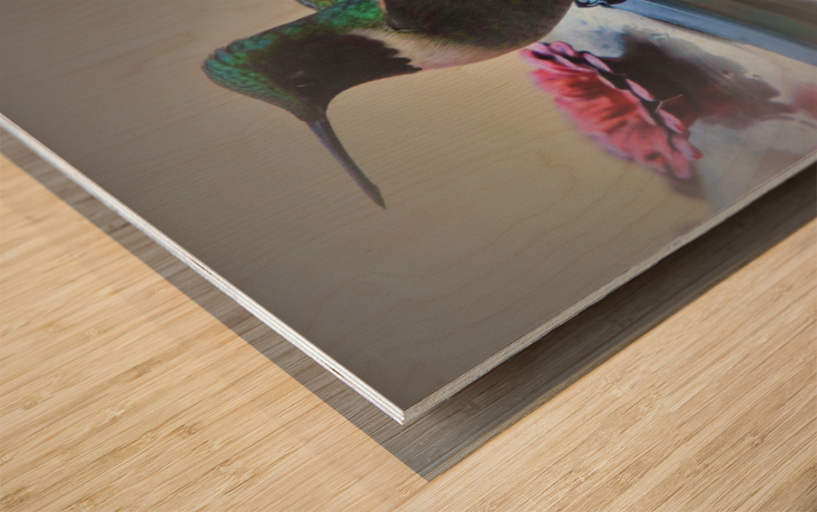 Colibris Wood print
