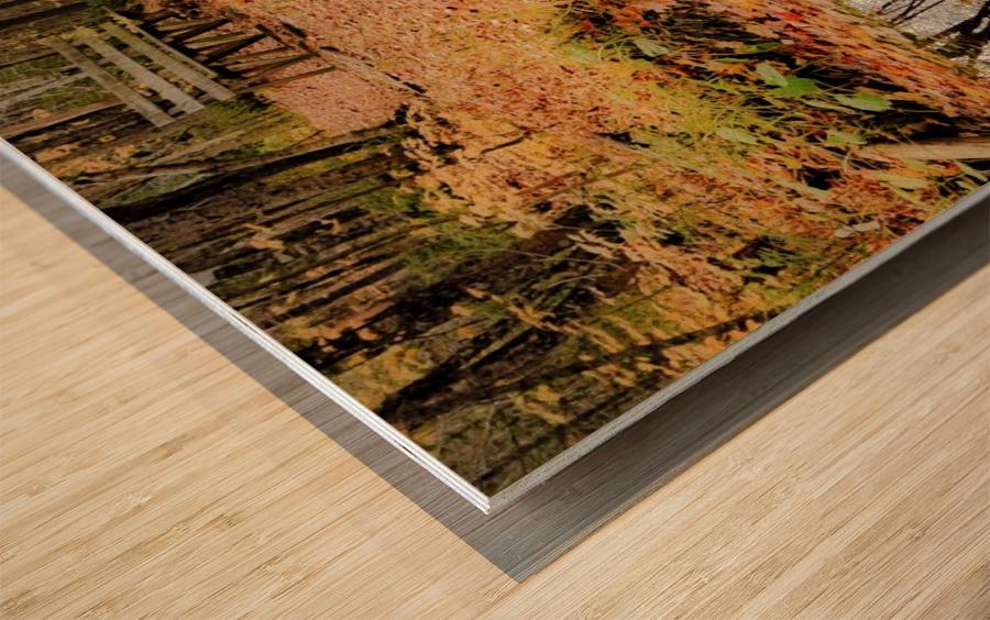 Passage oblige. Wood print