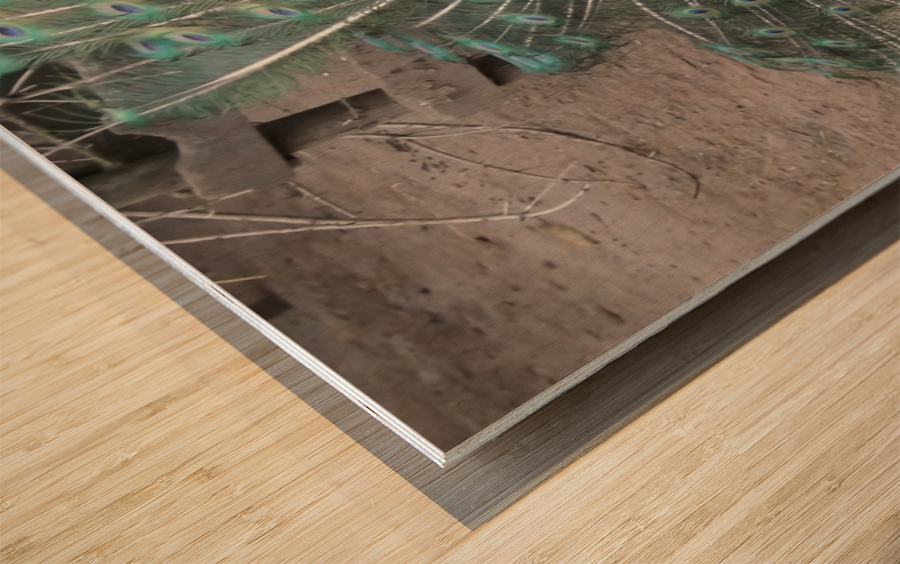 pics 127 Wood print