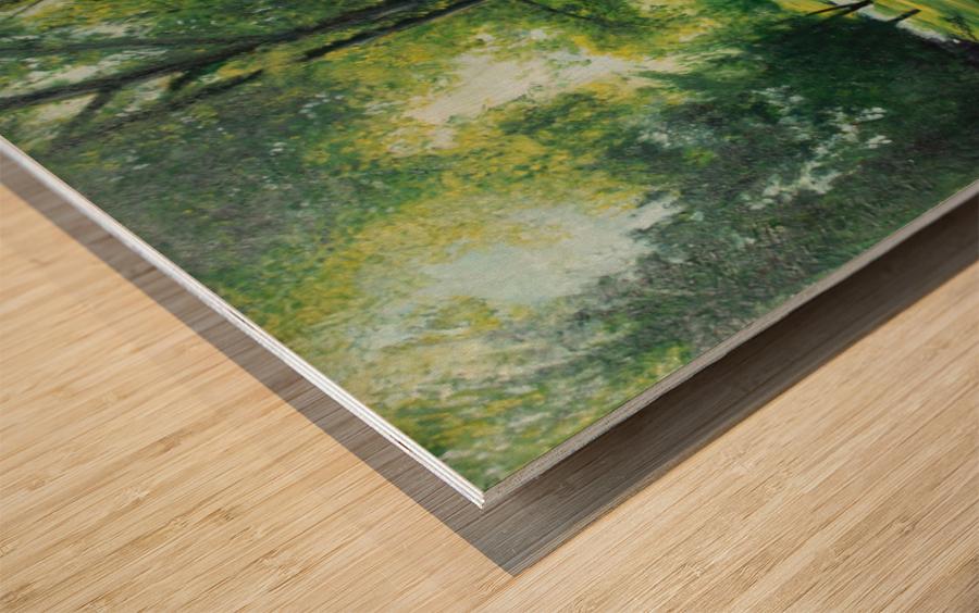 Arboretum at canal Wood print