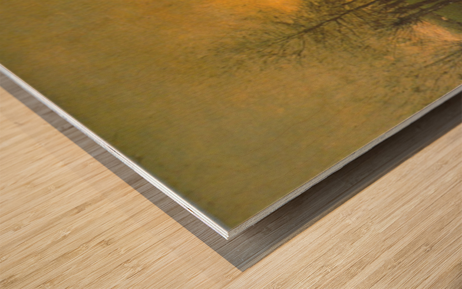 Dusk by Maris Wood print