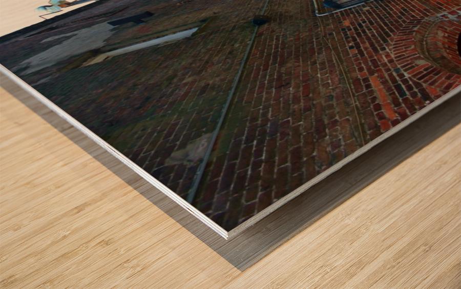 savannah2010403 Wood print