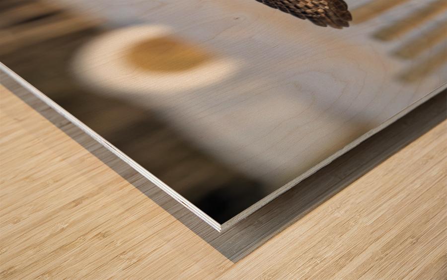The Take Off Wood print