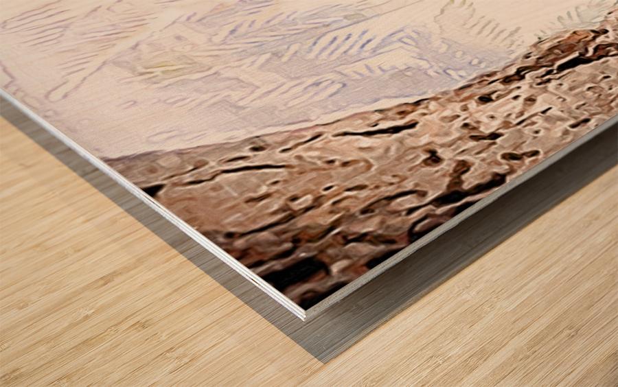 Beautiful encounters  Wood print