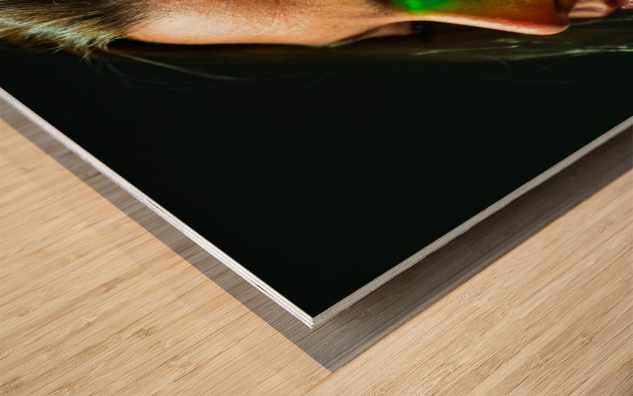 Rainbow Warrior Wood print