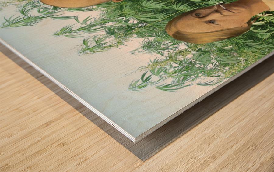 Modern Day Farmers Wood print