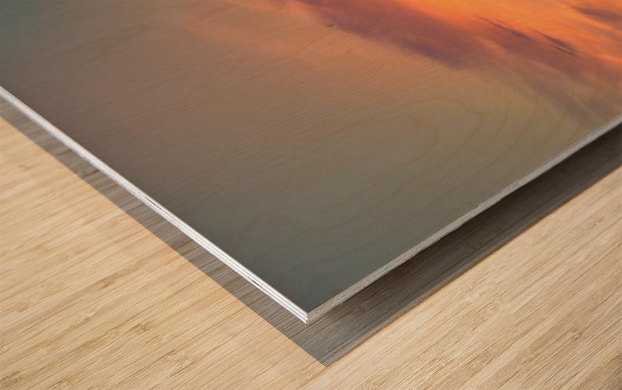 Meotoiwa Wood print