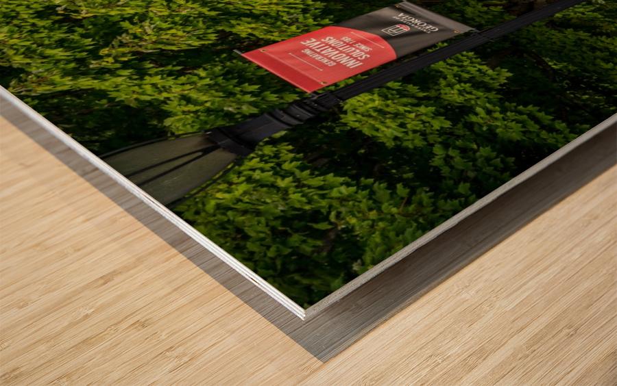 University of Georgia   Athens GA 9434 Wood print