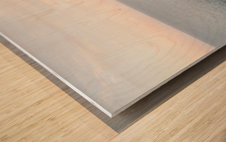 APULIA Wood print