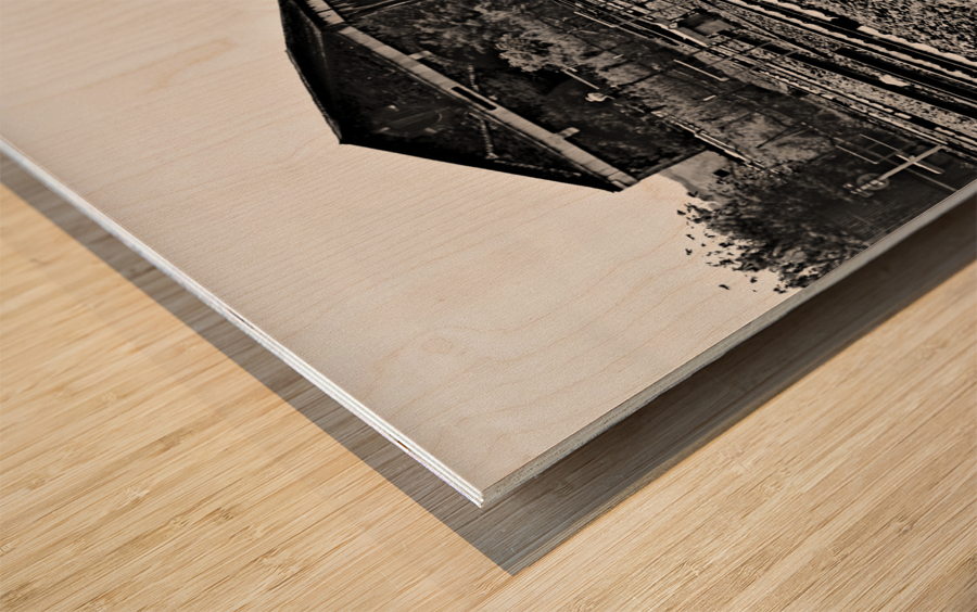 DSC_2753 Wood print
