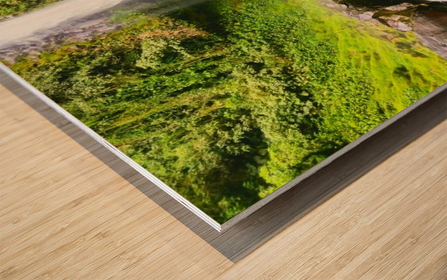 La Fortuna Waterfall  Wood print