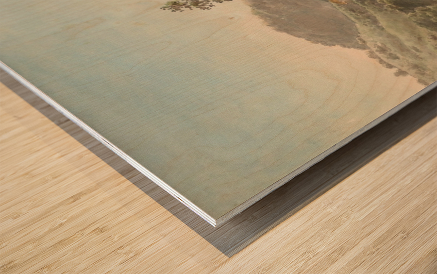 River Landscape with Distant Cliffs Wood print