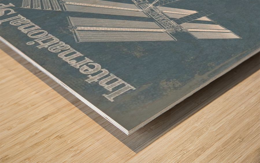 SpaceStation Wood print