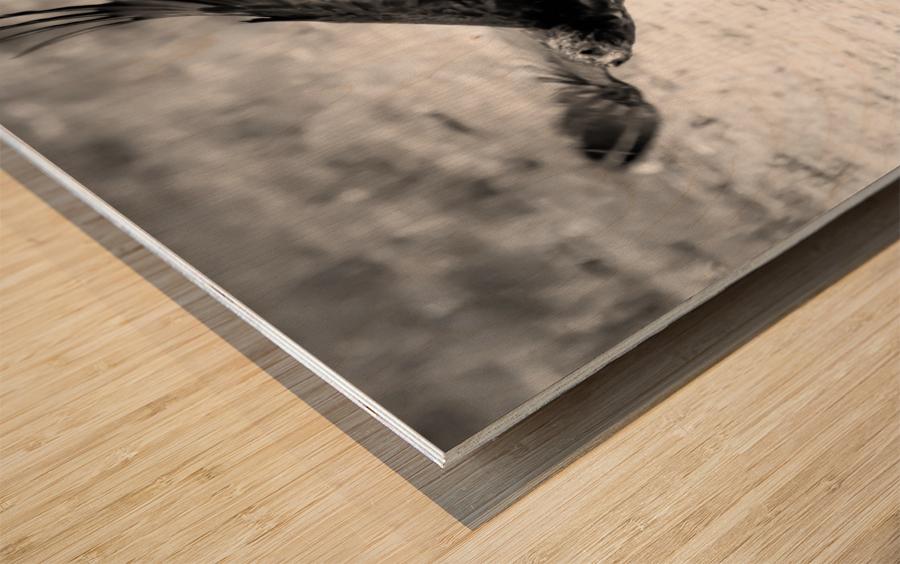 AdriaanPrinsloo 7140 Wood print