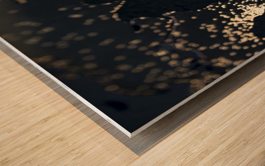 Dark Continent Erkon Wood print