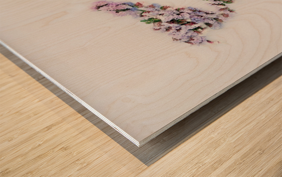 Light Continent Betria Wood print