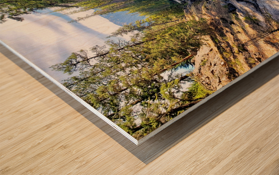 Icicle Gorge Trail Wood print
