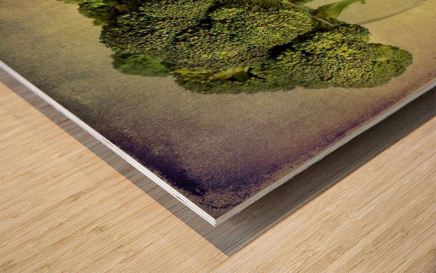 In a glass Wood print