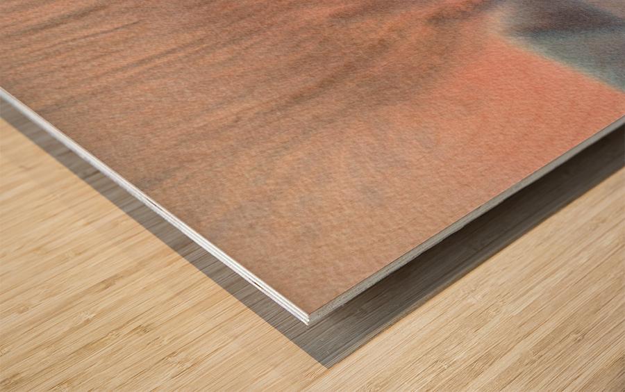 DSC_1009 Wood print