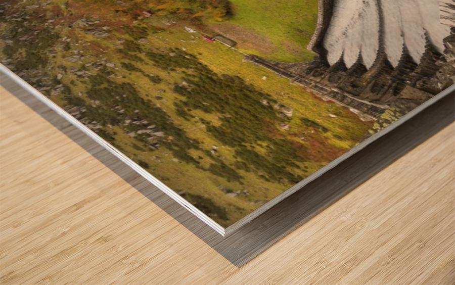 Craig Goch dam Wood print