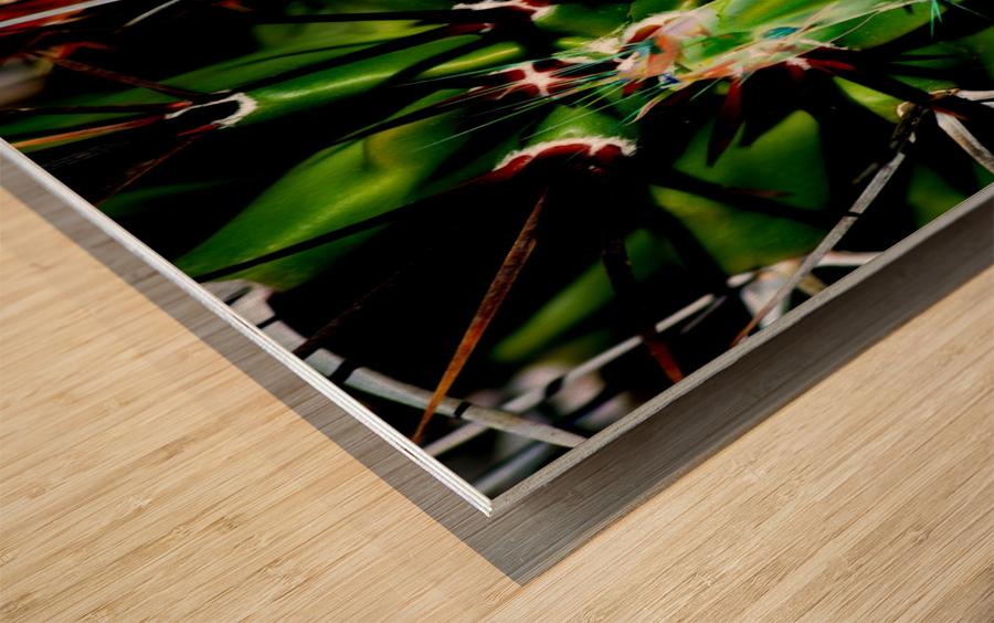 Neon Black Velvet Cactus 1 Wood print