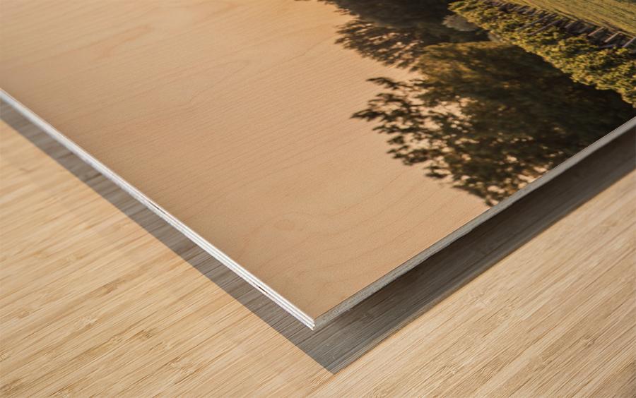 Lussac Wood print