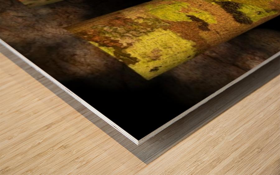 tree bark harmony Wood print