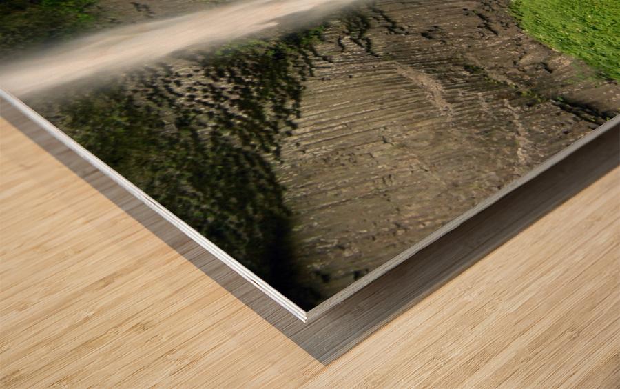 Spray Wood print
