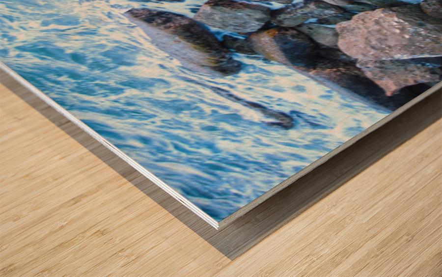 Rugged Coast Wood print