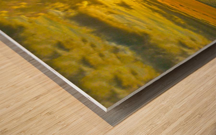 Surge Wood print