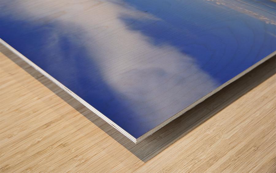 The Great Salt Lake 7 of 7 Wood print