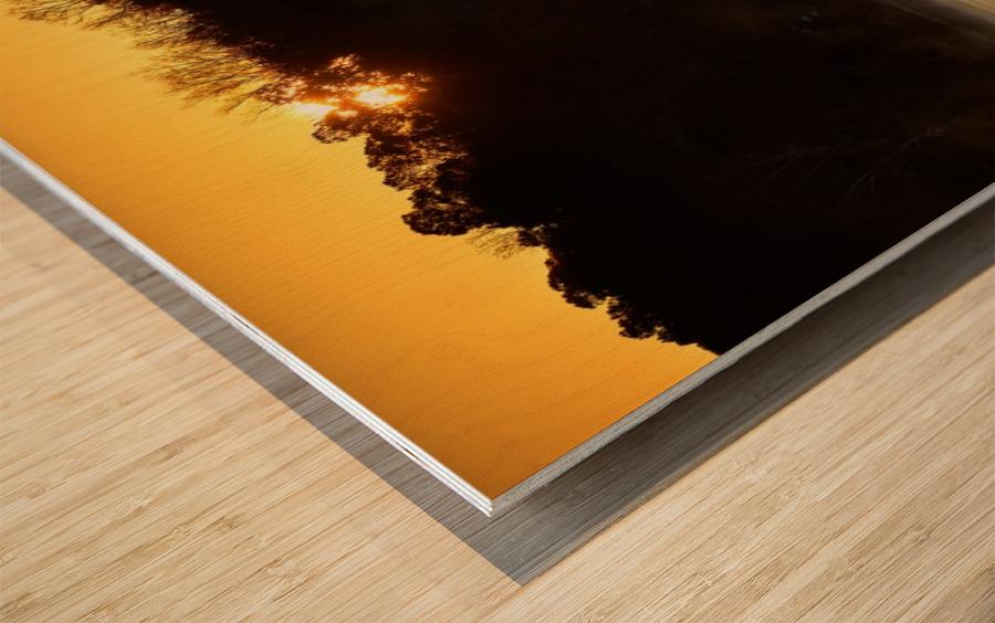 Sunrise at Langley Pond Park   Aiken SC 7R301610 12 19 20 Wood print