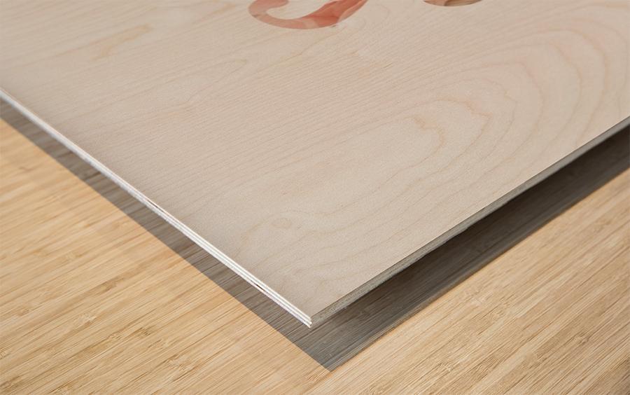 Daltana Spring Drill Wood print