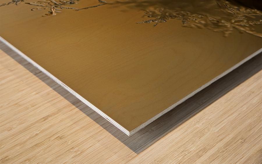 En  equilibre Wood print