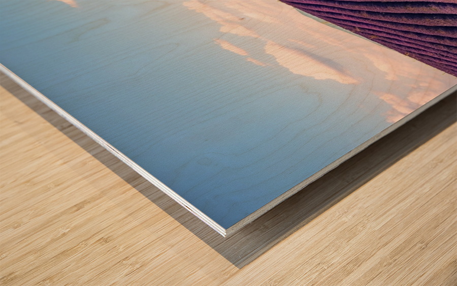 The Valensole plateau Wood print