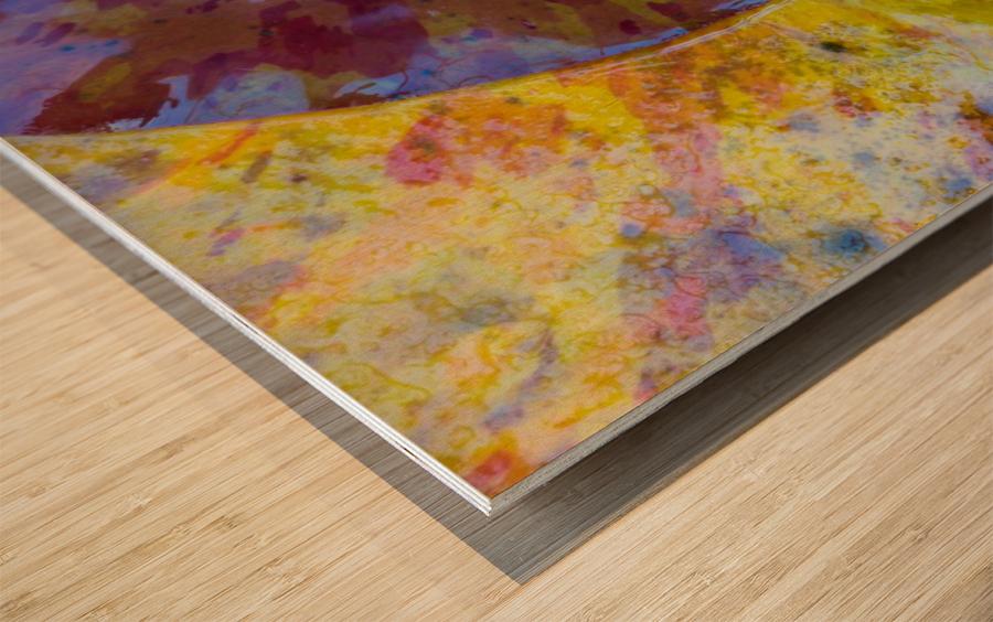 Colors Of Nature ap 2038 Wood print