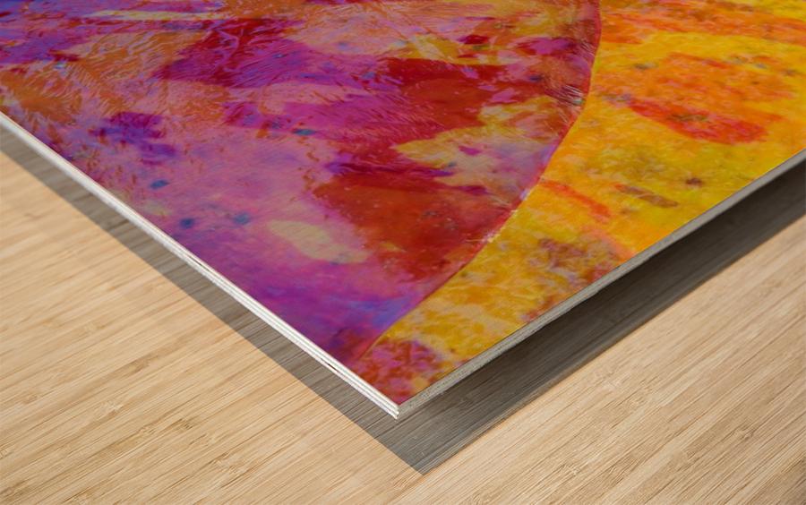 Colors Of Nature ap 2037 Wood print