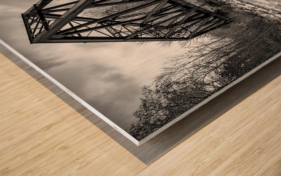 Train Bridge ap 2225 B&W Wood print